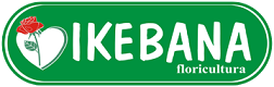 Ikebana Floricultura